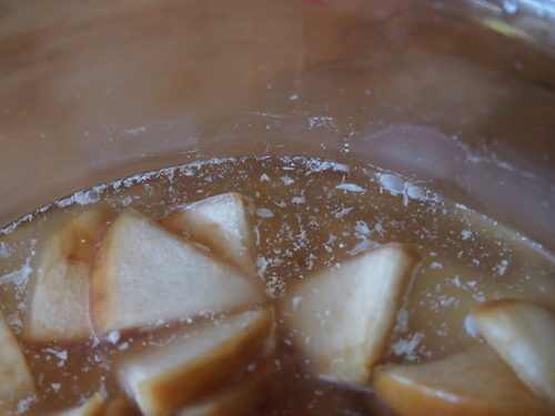 【失敗】りんご酢にカビが!対処方法