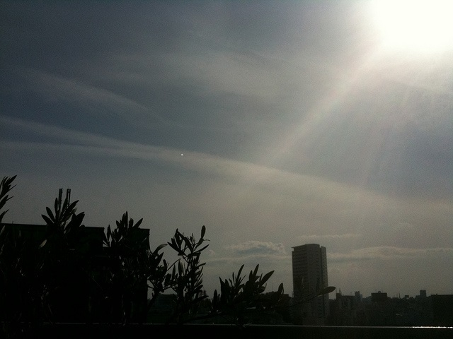 熊本地震。大木聖子先生の言葉「語り継ぐんじゃなくて防災を習慣とか文化に!」